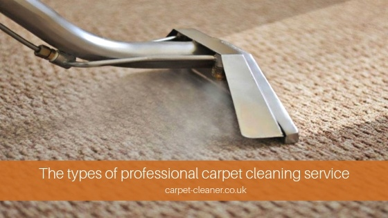 Professional Carpet Cleaning Types