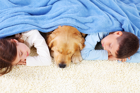 Expert Hacks From Carpet Cleaning Professionals