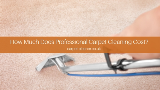 How Much Does Professional Carpet Cleaning Cost